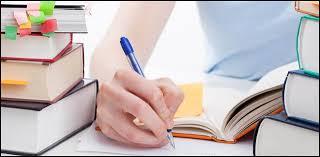 compare essay outline university