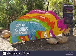 Rhino Size Chart At Taronga Western Plains Zoo Stock Photo
