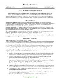 Special Business Development Manager Resume Sample India Entry Level