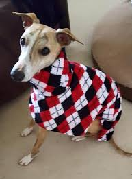 italian greyhound fleece housecoats and jumpers