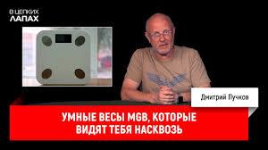 Умные <b>весы MGB</b>, которые видят тебя насквозь - YouTube