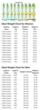 Height To Weight Ratio Correct Height And Weight Chart For Women And Men Find Your