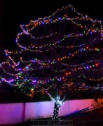 xmas lighting decorations. outdoor xmas lights decorations on a tree lighting