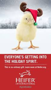 browse the most important gift catalog in the world heifer international charity ending hunger and poverty