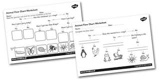 Animal Flow Chart Ks2 Animal Flow Chart Worksheet Places To Visit Animal Flow
