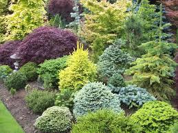 sprucebud\u0027s image   plant combinations   Pinterest   Gardens ...