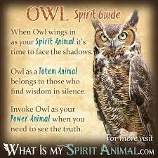 Resultado de imagen de spirit animals angels