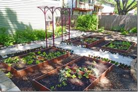 best garden vegetables. I Best Garden Vegetables G