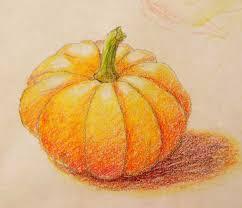 pumpkin drawing with shading. pin drawn orange pencil drawing #11 pumpkin with shading