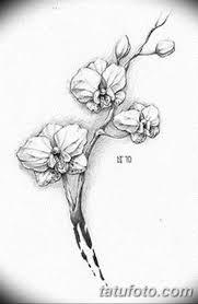 черно белый эскиз тату рисункок орхидея 11032019 033 Tattoo