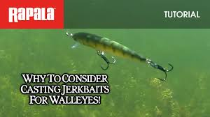 Fishing Lure Finder Official Rapala Usa Site