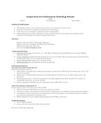 Resume Professional Statement Example Summary Resume Resume Summary ...