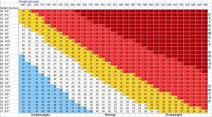 Nhs Cholesterol Chart Uncategorized Tomtdr