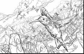 Small Picture Beautiful realistic flower coloring pages hummingbirds with