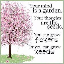 Quote Garden Stunning The Quote Garden I Love This So True Is Your Half Full Or Empty