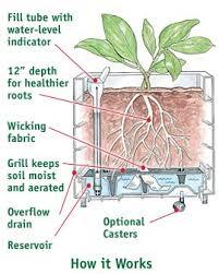 Self Watering Teak Planters 2