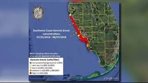 New Map Shows Red Tide Problems Worsening Along Floridas