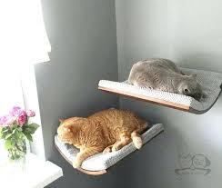 wall mounted cat shelves oval wall bed cat shelves cat furniture by diy wall mounted cat