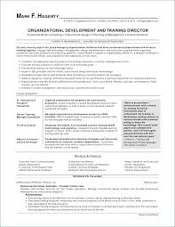 Good Resume Layout Cool Best Resume Layout Inspirational Resume Layout Word Igreba
