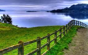 Green sea nature