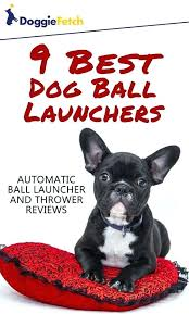 tennis ball launcher for dogs diy 9 best dog launchers automatic and thrower dog tennis ball launcher