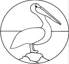 pelican patterns pelican pattern
