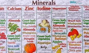 Foods Rich In Vitamins And Minerals Chart Vitamins And Minerals Chart Mineral Chart Vitamins