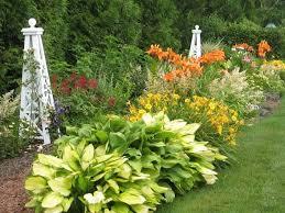 Small Picture 47 best Hemerocallis Daylilies