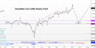 Elliott Wave Theory In Live Cattle Futures Trilateral Inc