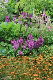 Shade Perennials With Colorful Flowers