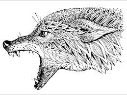 Small Picture Complex Coloring Pages Of Animals Pretty Coloring Complex Coloring