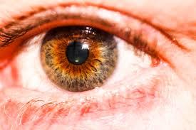 Hazel Eye Chart Eye Color Wikiwand