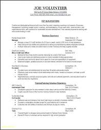 Standard Resume Template Word Adorable Free Creative Resume Templates Microsoft Word Beautiful General