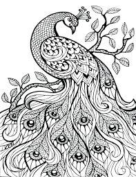 Evil Fairy Coloring Pages For Best Coloring Pages Collection