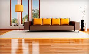 hardwood floor cleaning san go services