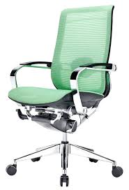 Desk Chairs : Best Ergonomic Mesh Office Chair Review Deluxe Low ...