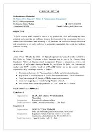 Qa Resume Sample India Resume Pinterest Personal Branding And