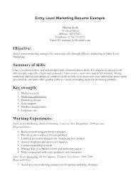 Entry Level Marketing Representative Resume Sample