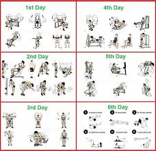 5 Day Workout Chart Gym Exercise Chart Day By Day Bedowntowndaytona Com