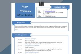 Delightful Resume Template