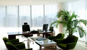 green office interior. Green By Nature Is Ottawa\u0027s Foremost Interior Office Tropical Plant Maintenance Service. We Offer A Full Range Of Creative, Esthetically Pleasing And