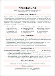 Resume Writers Association Gorgeous Professional Technical Resume Writers Professional User Manual