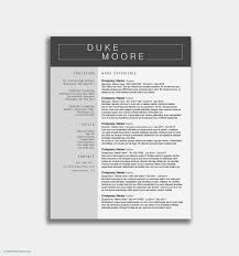 Sample Resume For Security Guard Sample Resume For Security Officer Supervisor Valid Resume Security