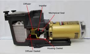 hayward pool pump motor home and furnitures reference hayward pool pump motor hayward motor change