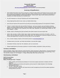 Agile Resume Beauteous 48 New Bluesky Resume Photo Best Professional Resume Example