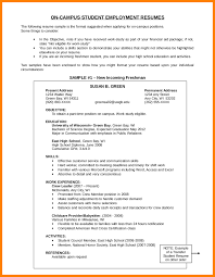 6 Resume Objective Section Affidavit Letter Example Peppapp