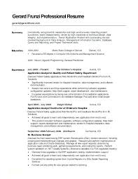 Resume Summary Examples Entry Level Unique Summary On A Resume Examples Professional Summary Resume Examples