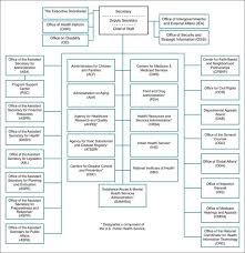Public Health System Structure And Function Basicmedical Key