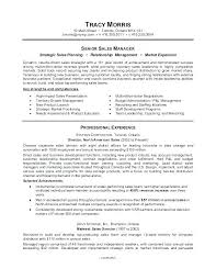 Professional Resume Writing New Professional Resumes Writers Professional Resume Writers Cost