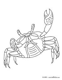 Small Picture Crab coloring pages Hellokidscom